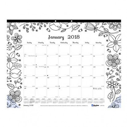 Amazon.com : Blueline 19 DoodlePlan Monthly Coloring Desk Pad ..