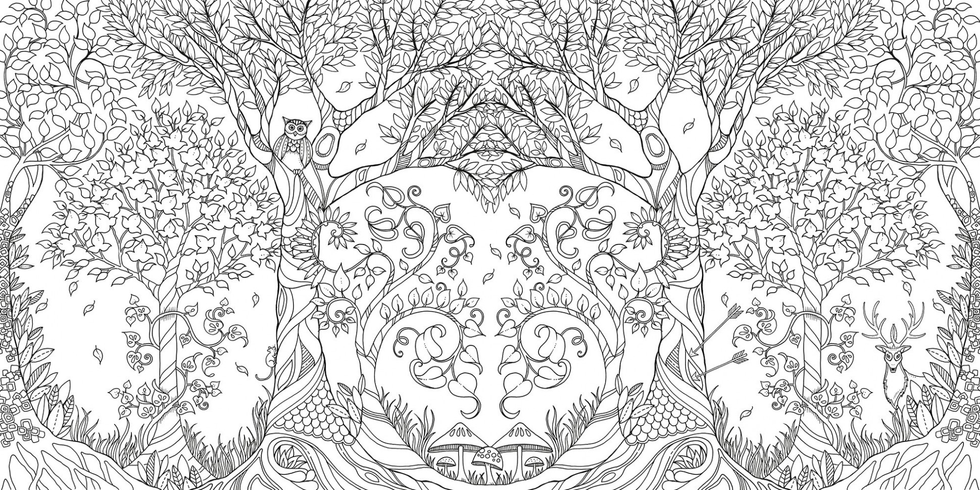 Amazon.com: Enchanted Forest: An Inky Quest