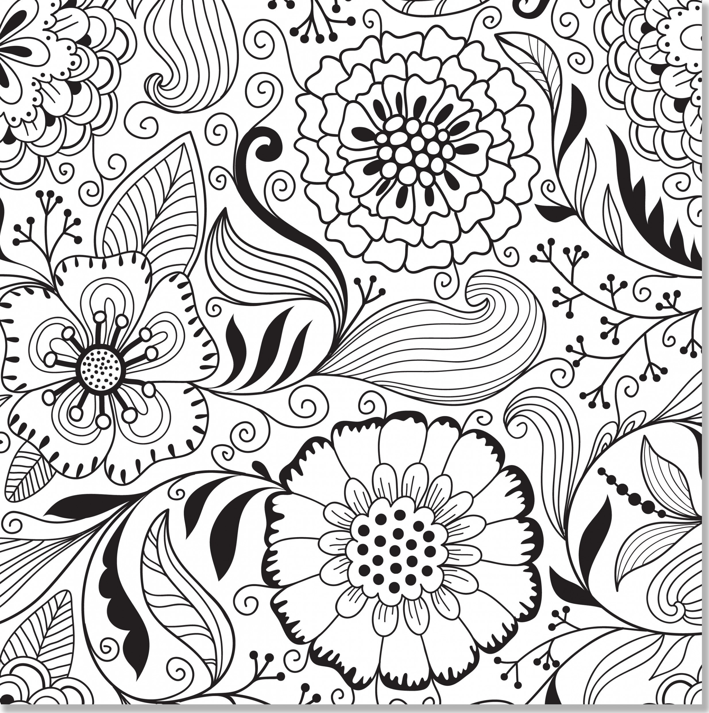 Amazon.com: Floral Designs Adult Coloring Book (18 stress-relieving ...