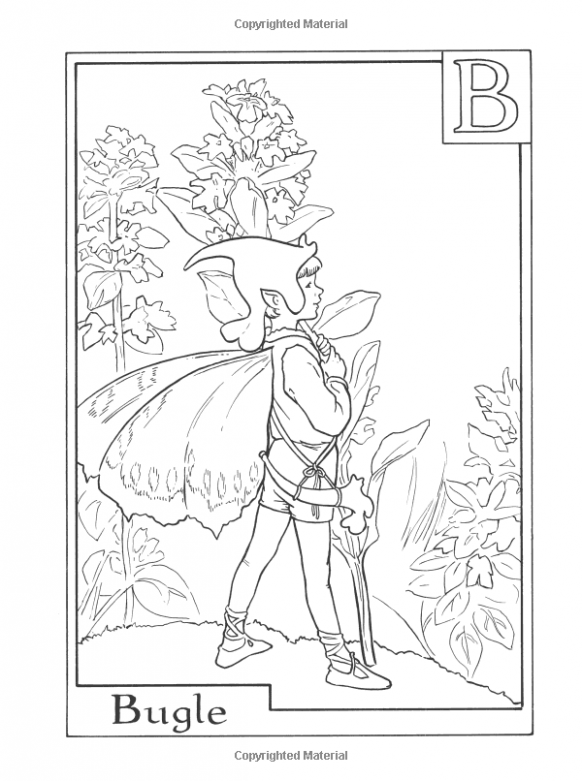 Amazon.com: Flower Fairies Alphabet Coloring Book (18 ...