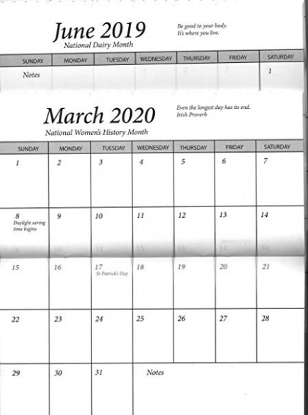 Amazon.com : Pocket Calendar 20 Year (200209-200) Planner 20 Datebook ..