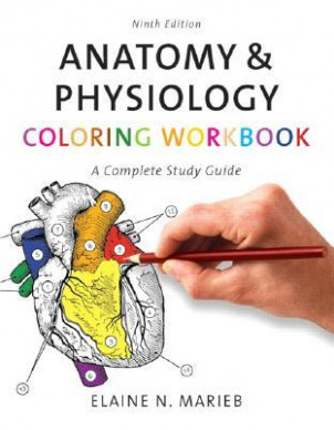 Anatomy  – anatomy and physiology coloring book