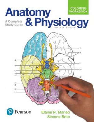 Anatomy and Physiology Coloring Workbook: A Complete Study Guide ..