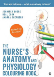 Anatomy->Coloring books, Coloring Books, Books | Barnes  - anatomy and physiology coloring book