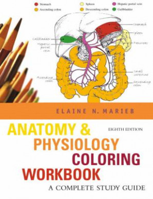 Anatomy Physiology Coloring Book by Elaine N
