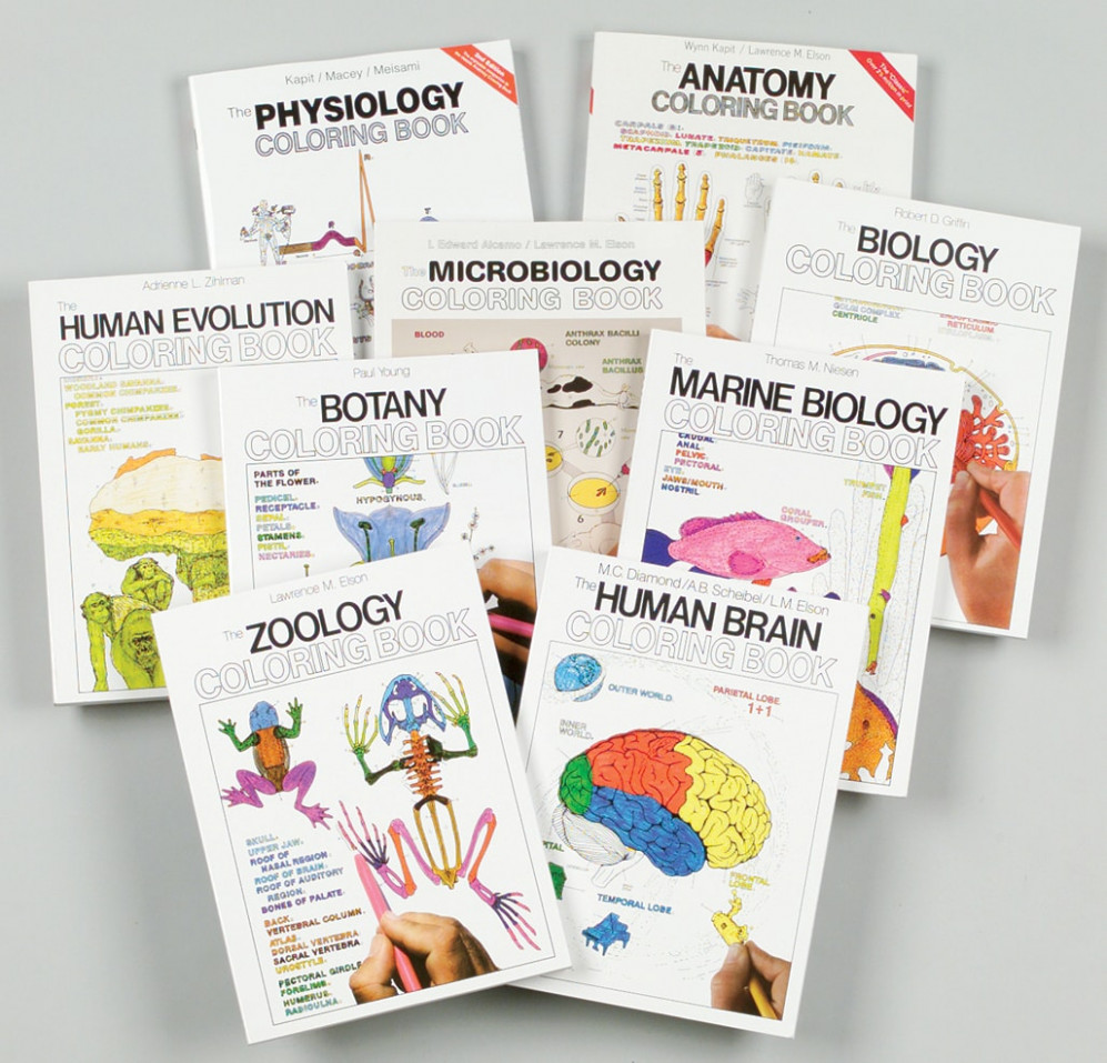 Biology Coloring Books - The Human Brain - the anatomy coloring book