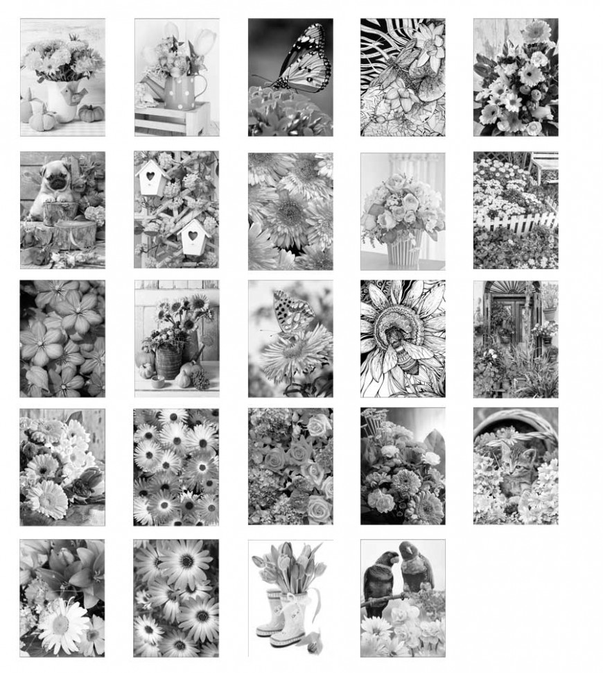 Blossom Shading: Grayscale Photo Coloring Book for Grown Ups