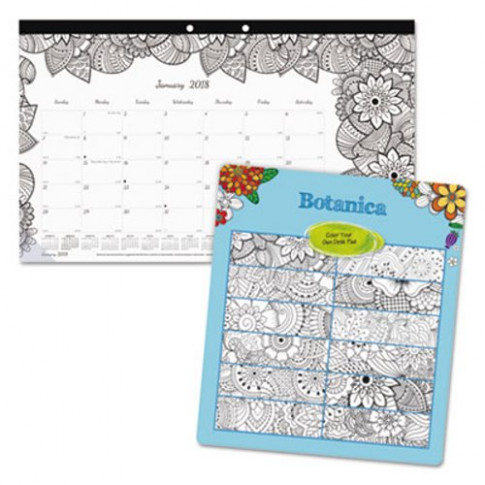 Blueline DoodlePlan Desk Calendar w/Coloring Pages, 117 117/117 x 117 17/17 ..