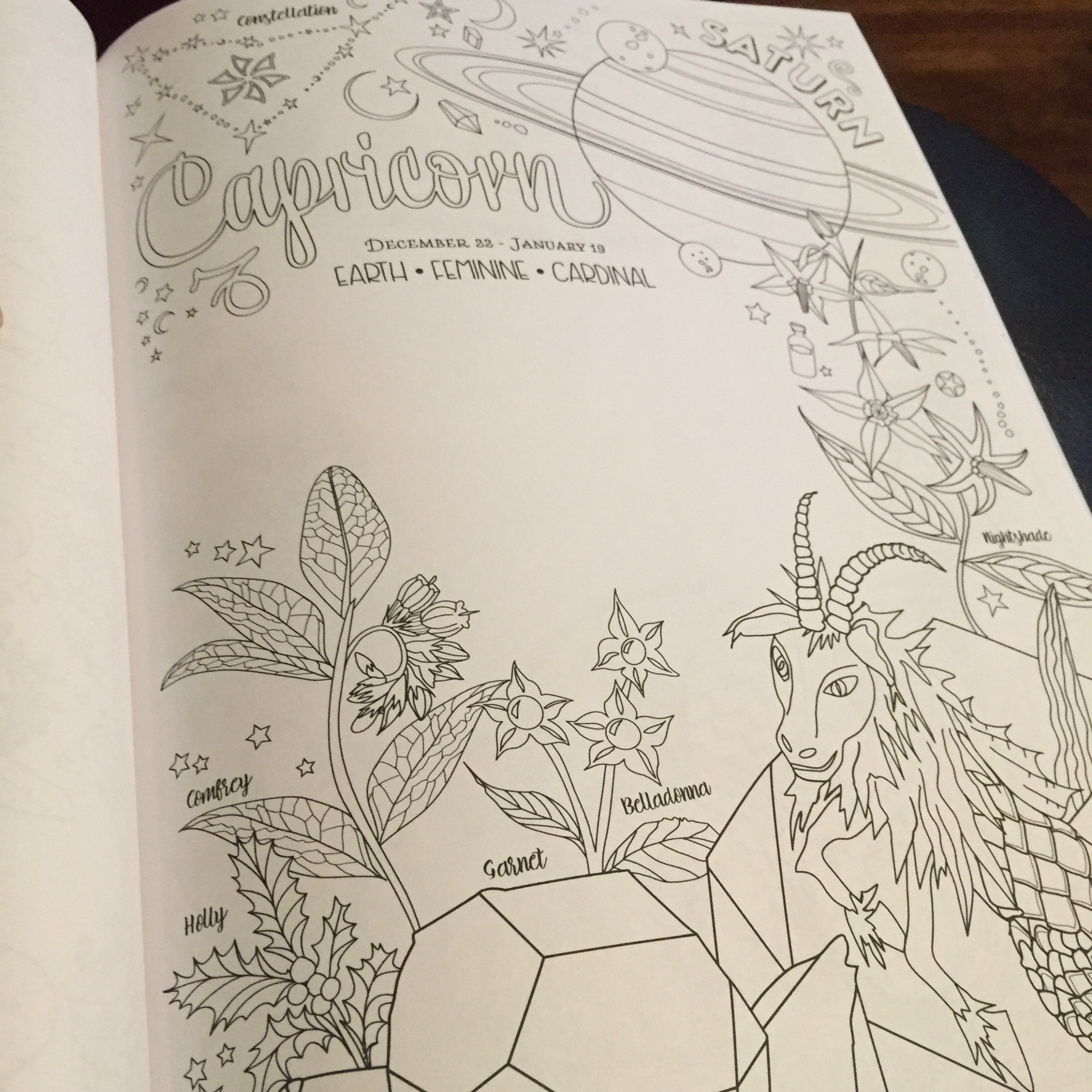 Book Review of Shadows: The Coloring Book of Shadows Amy Cesari ..