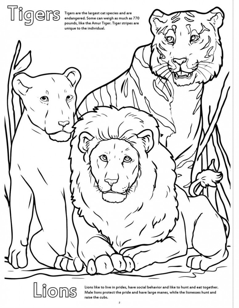 Coloring Books | Zoo Animals Really Big Coloring Book with At the ...