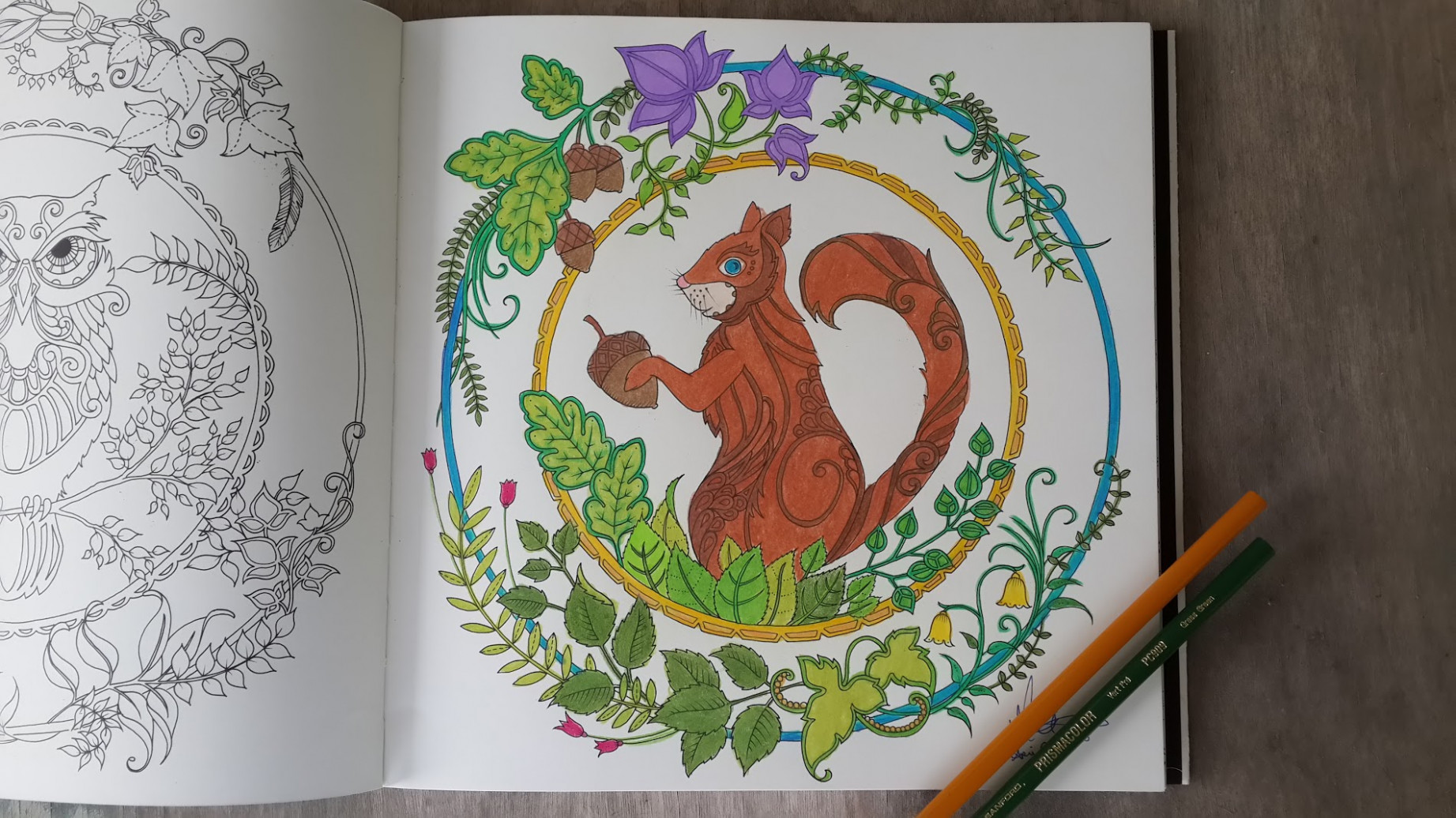 Coloring for Grown Ups | Given Eyes To See – enchanted forest coloring book finished