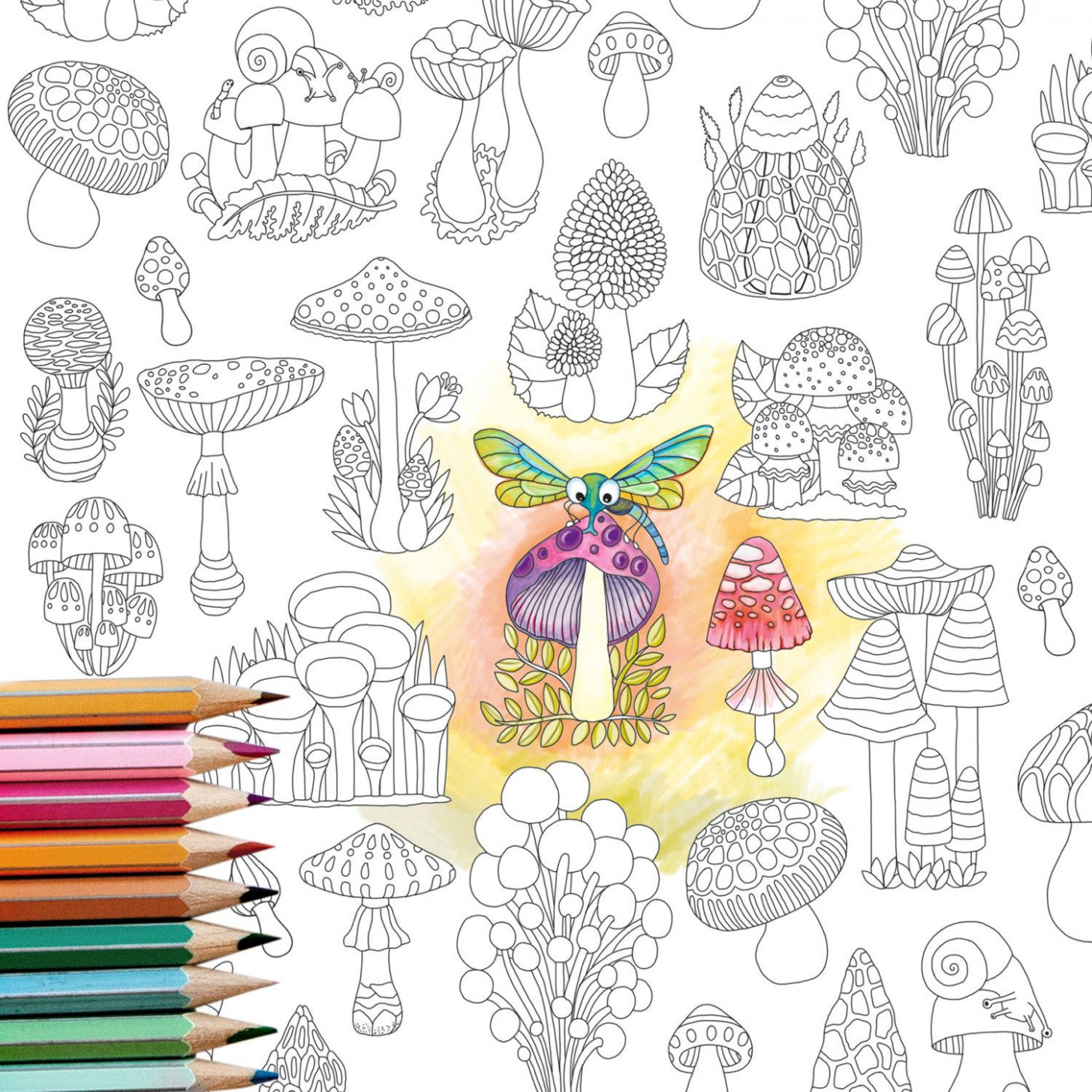 Coloring Page INSTANT DOWNLOAD Mushrooms – Adult Coloring page ..