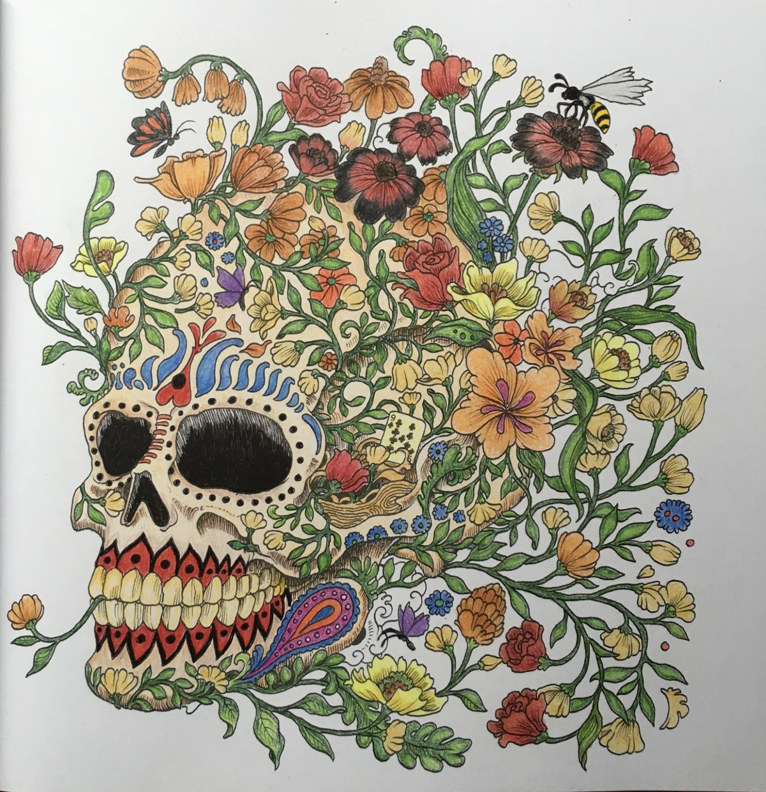 ColorMyStyle: Review: Imagimorphia Coloring Book