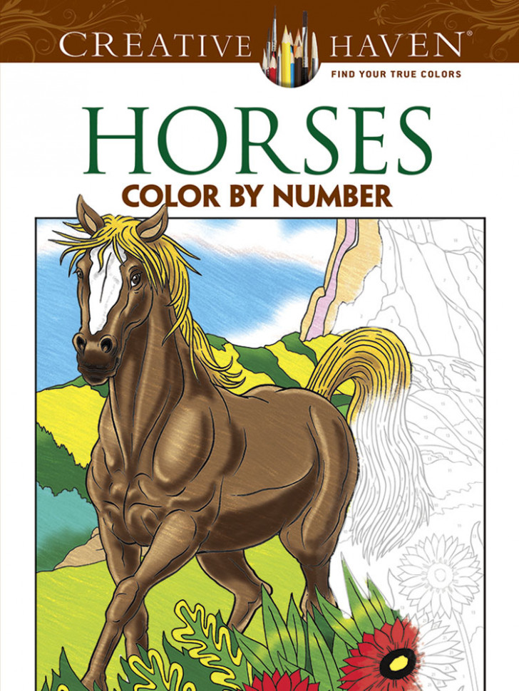 Creative Haven Horses Color by Number Coloring Book - color by number coloring book