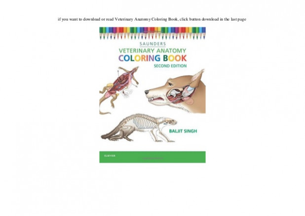 Download Veterinary Anatomy Coloring Book pdf format