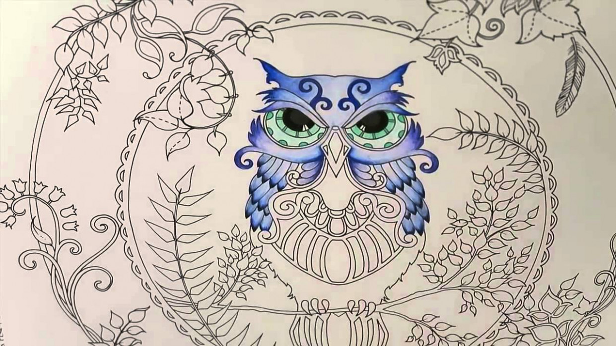 Enchanted Forest Coloring Book | Owl Part 19 - YouTube