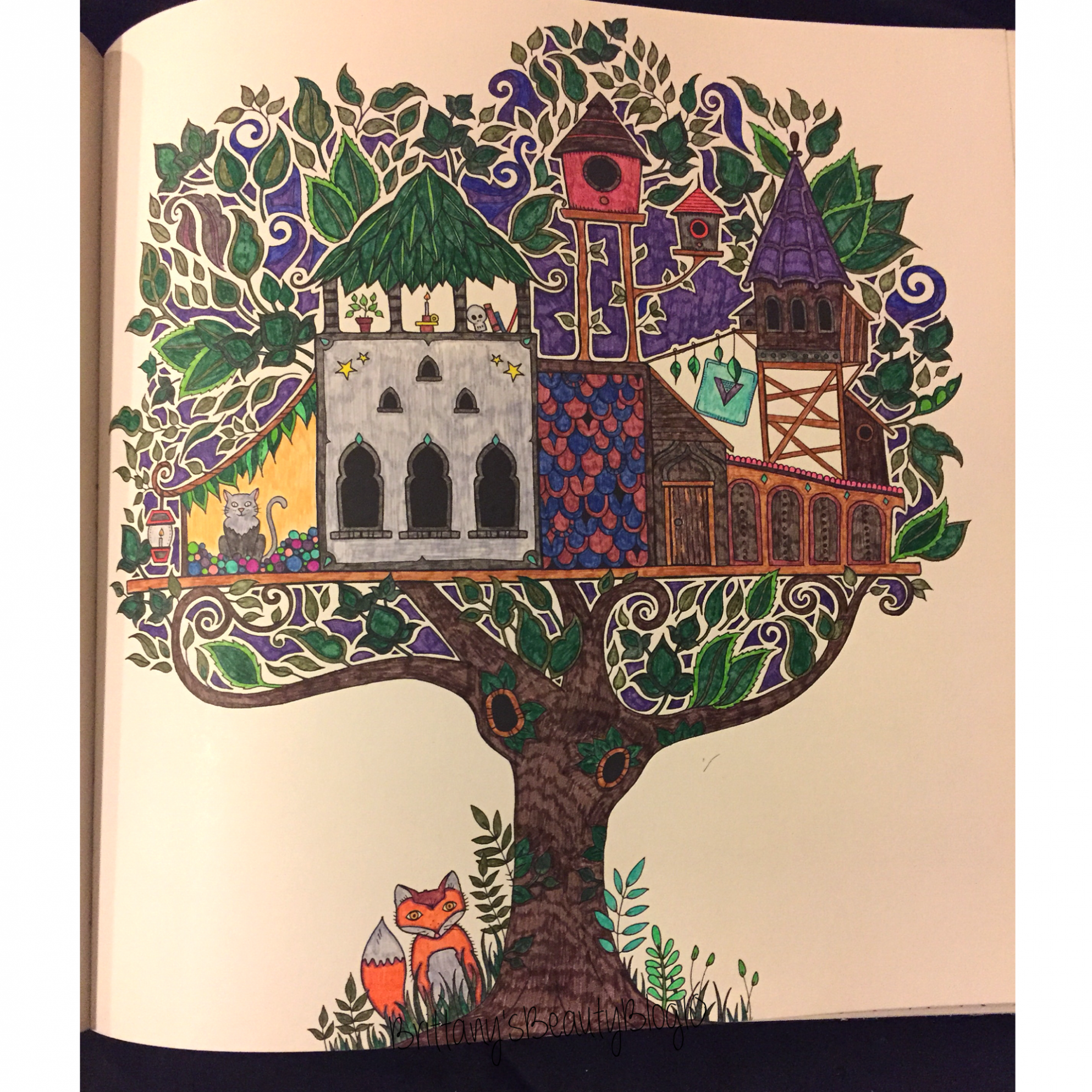 Enchanted Forest Coloring Book Review! – Not Another Beauty Blog