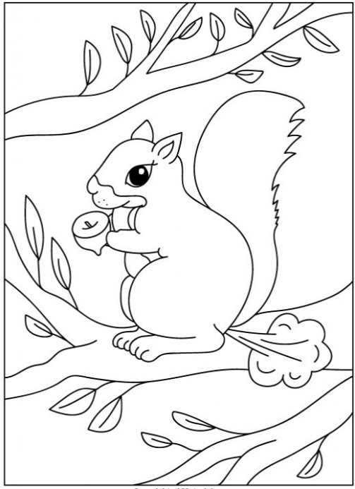 Farting Animals Coloring Book - I Buy Drunk