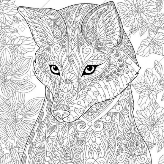 Fox. 18 Coloring Pages. Animal coloring book pages for Adults