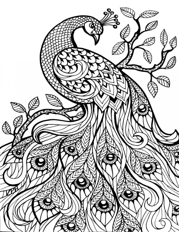 Free Printable Coloring Pages For Adults Only Image 13 Art ..