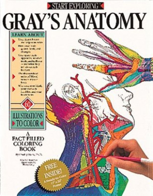 Gray's Anatomy: A Fact Filled Coloring Book by Freddy Stark – the anatomy coloring book