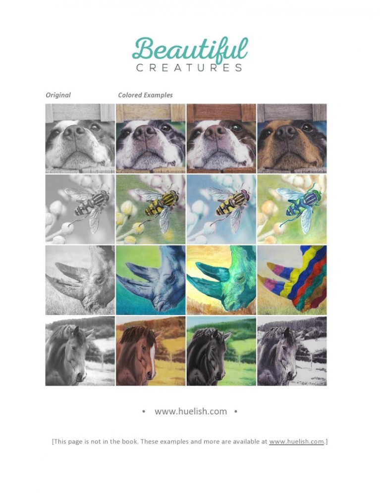 Greyscale coloring book nature photos and more