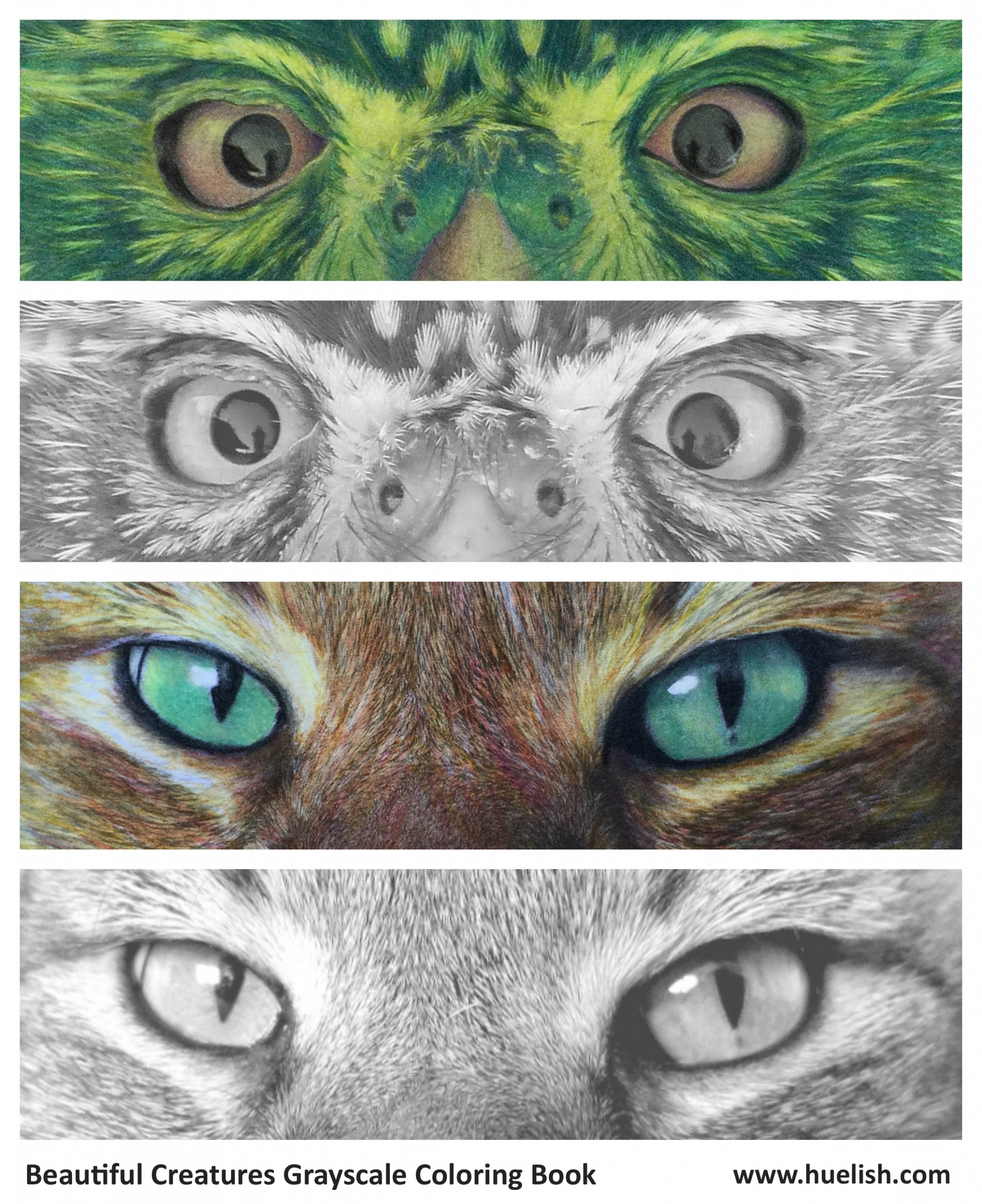 Huelish Grayscale Adult Coloring Books – How to Color Grayscale ..