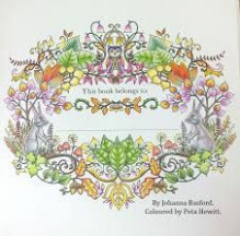Image result for enchanted forest coloring book finished | Dragonfly ...