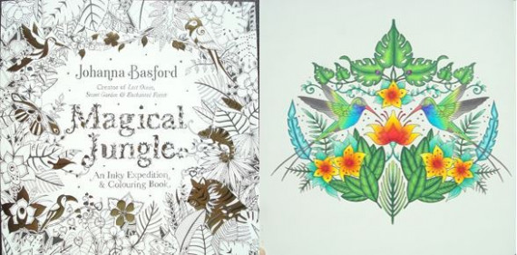 Magical Jungle: An Inky Expedition and Colouring Book – A Review ..