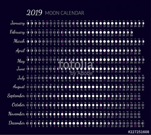 Moon illumination and moon age at 17 year. Daily planner of lunar ...