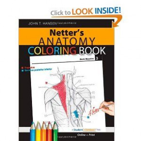 Netters Anatomy Coloring Book PDF by John T. Hansen | Medical ..