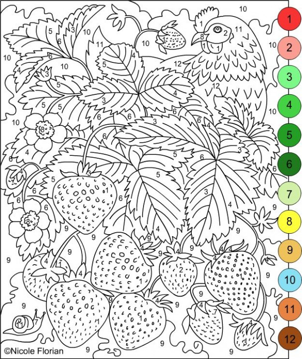 Nicole's Free Coloring Pages: COLOR BY NUMBERS * STRAWBERRIES and ..
