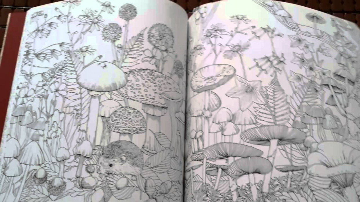 Rhapsody in the Forest Coloring Book – YouTube – rhapsody in the forest coloring book