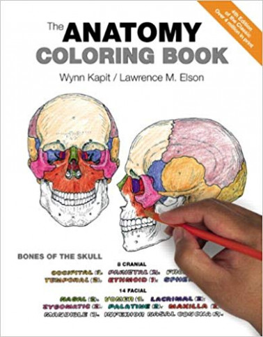 The Anatomy Coloring Book: 16: Medicine  – anatomy and physiology coloring book