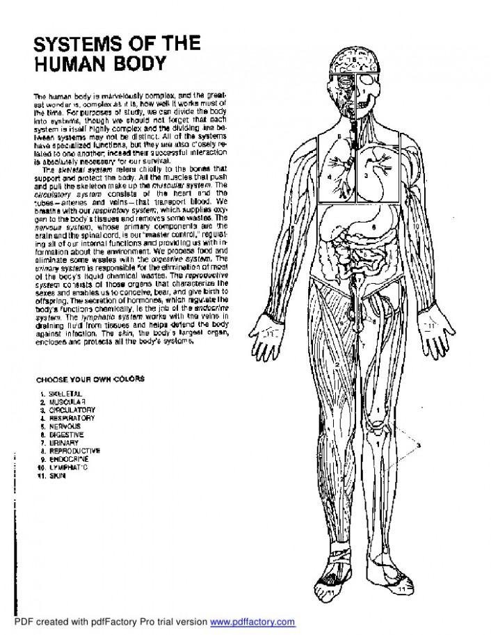 The Anatomy Coloring Bookpdf Trend Anatomy Coloring Book Pdf ..