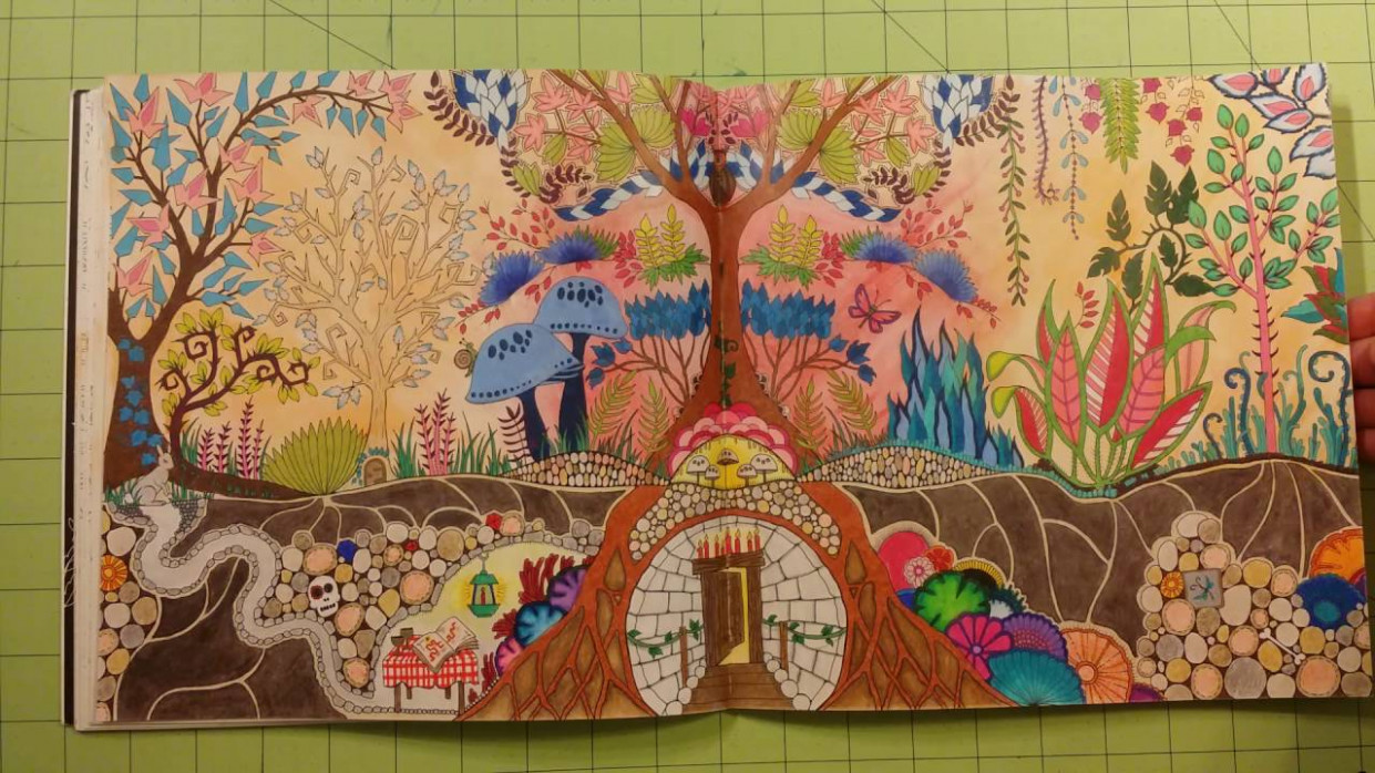 The enchanted forest by johanna basford adult coloring book review ...
