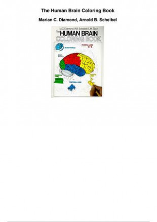 The human brain coloring book pdf by Jamar Finn – issuu – human brain coloring book pdf