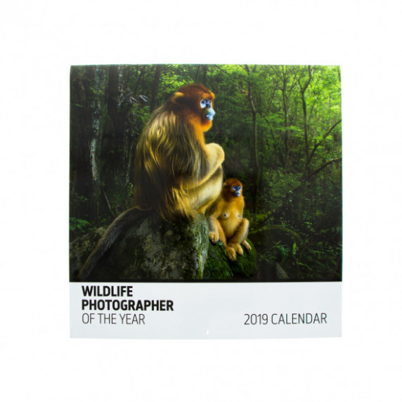 Wildlife Photographer of the Year 17 17 wall calendar | Natural ..