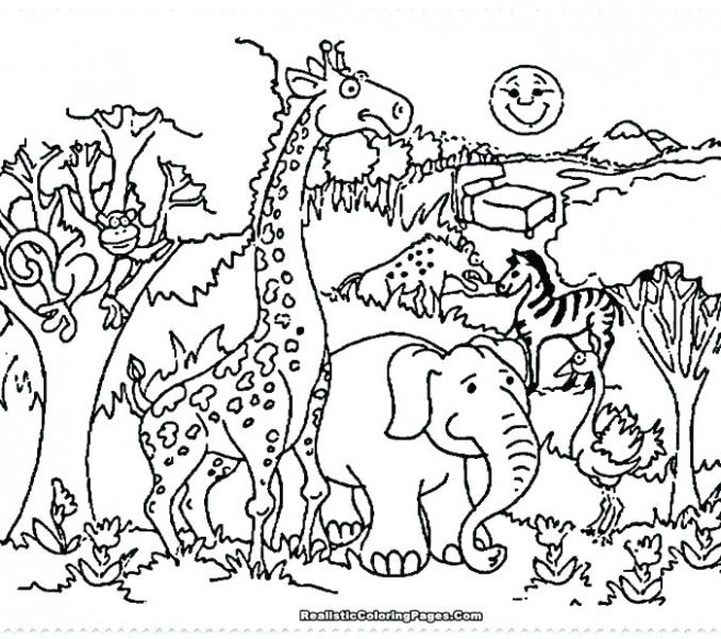 Zoo Coloring Book : Coloring Page - istanbulescort-ilan.com