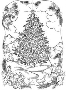 18 Best Adult Christmas Coloring Book images in 18 | Christmas ..