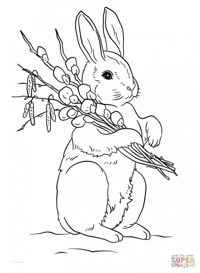 Awesome 16+ Cute Easter Bunny Coloring Pages Printable | Holiday ...
