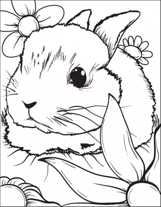 Bunny Rabbit Coloring Page #16 | Coloring Pages for Kids | Bunny ...