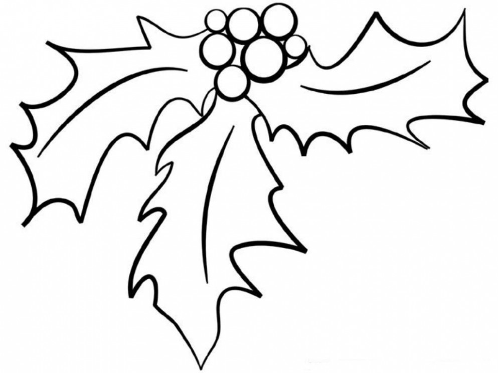 Christmas Coloring Pages Holly Leaves - High Quality Coloring Pages ...