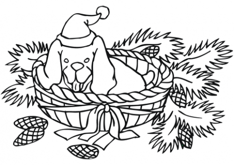 Christmas Dog coloring page | Free Printable Coloring Pages
