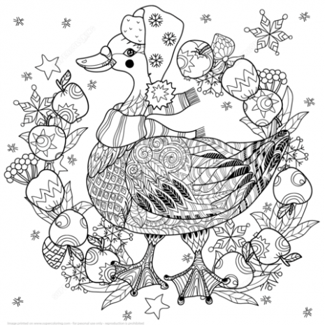 Christmas Goose with Apples Zentangle coloring page | Free Printable ..