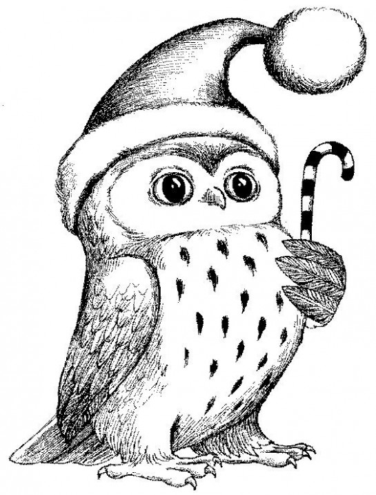 Christmas owl rubber stamp WM P17 | Christmas pillows | Christmas ..