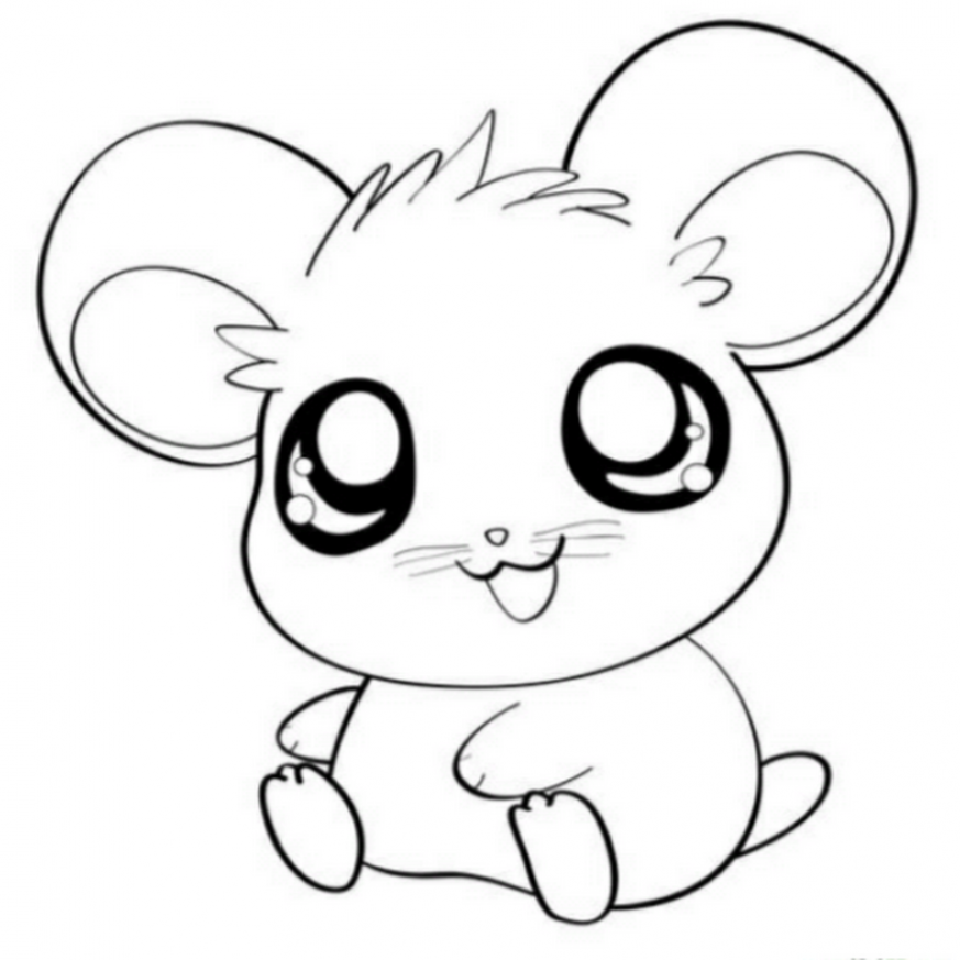 Cute Hamster Coloring Pages – Coloring Home – Christmas Hamster Coloring Pages