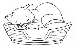 Free Christmas Kitten Coloring Pages