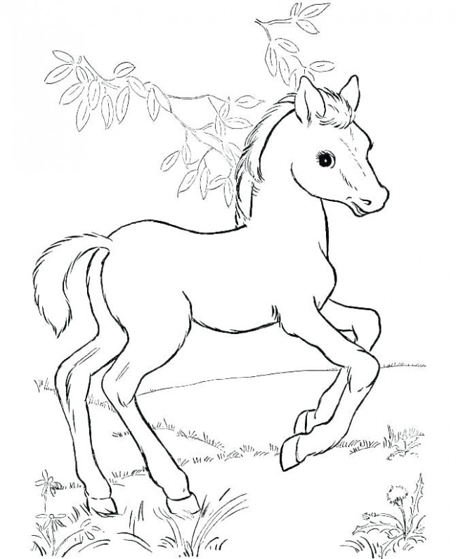 Free Horse Coloring Pages Printable Race Horse Coloring Pages Free ..