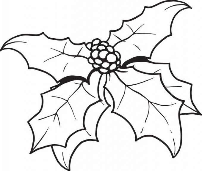Free, Printable Christmas Holly Coloring Page For Kids – Coloring Home – Christmas Coloring Pagesholly Leaves